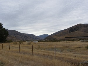 Central Otago Autumn 2014 010