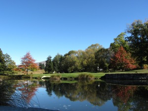 Central Otago Autumn 2014 013
