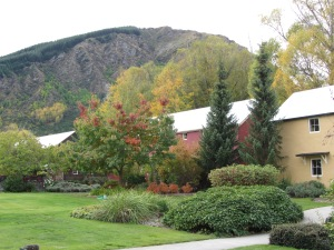 Central Otago Autumn 2014 022